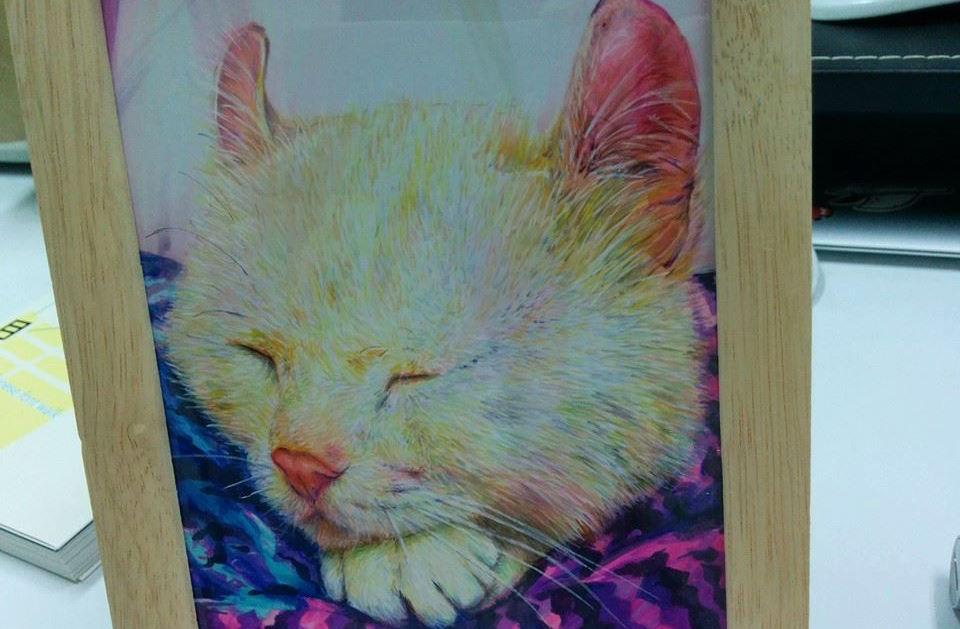 最心愛的貓咪過世